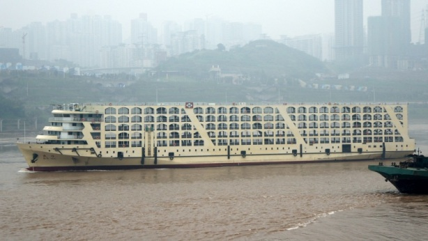 Picture by Yangtzeboats via www.shipspotting.com